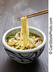 curry udon, japanese noodles