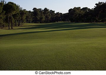 curso, día soleado, golf