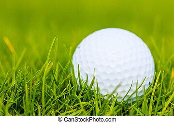 curso, golf