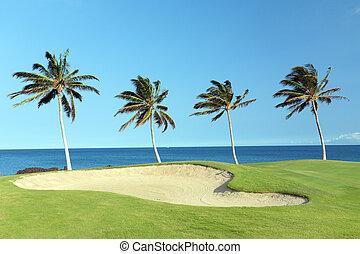 curso, golf, hawai