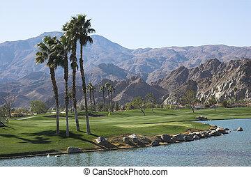 curso, palma, palmer, golf, manantiales