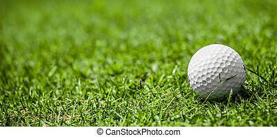 curso, pelota, golf