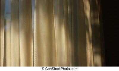 Curtains in the wind