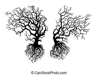 curvado, antigas, árvores