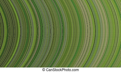curve ribbon pattern green