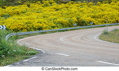 Curve with barrier and flowery bush in Spain