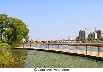 Curved bridge landscape in a park