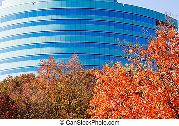 Curved Green and Blue Building Behind Autumn Trees