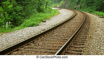 A curved section of railroad tracks in an isolated wooded area.
