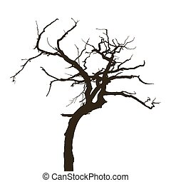 Curved tree