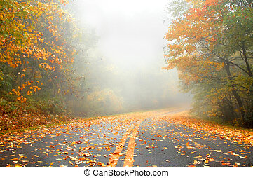 Curving out of Sight - Orange leaves glow on this foggy,...