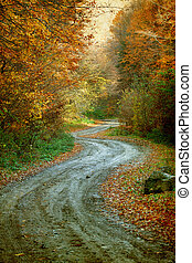Vintage photo of curving road in autumn forest