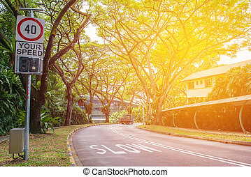 curving väg, med, träd, in, a, publik parkera