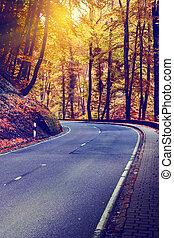 curvy, ősz, út, táj, színes