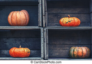 curvy shape pumpkins in wooden box