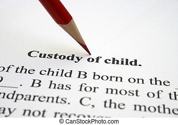 custódia, de, criança
