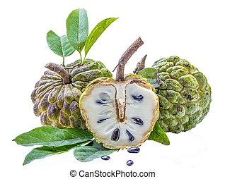 Custard apple tropical fruit isolated on white background