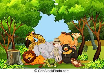 custode, animali, zoo