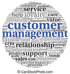 Customer service concept in word tag cloud on white -...