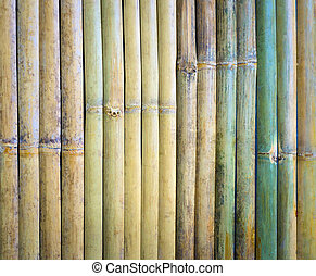 Cut a piece of green bamboo wood