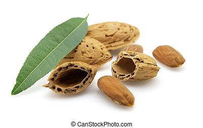 Cut almonds