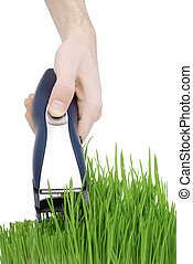 Cut grass. Hair cutter in hand (isolated)