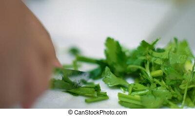 Cut green onion. Closeup shot