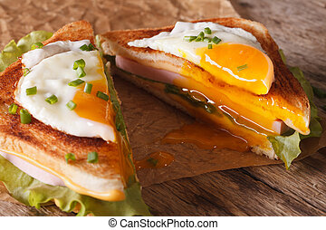 Cut in half sandwich with a fried egg, ham and cheese close-up. horizontal
