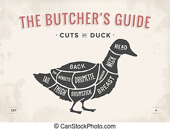 Cut of meat set. Poster Butcher diagram and scheme - Duck. Vintage typographic hand-drawn. Vector Illustration.