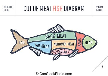 Cut of meat set. Poster Butcher diagram and scheme - Fish. Vintage typographic hand-drawn