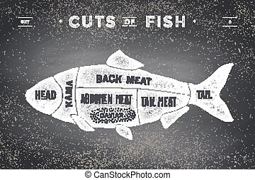 Cut of meat set. Poster Butcher diagram and scheme - Fish