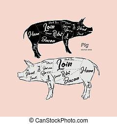 scheme and guide - Pork. Vintage typographic hand-drawn. Vector illustration