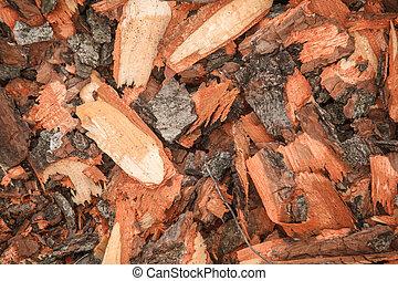 cut off tree bark nature texture