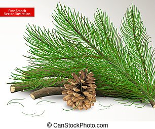 Cut pine and dry cone isolated on white background. Objects and art brush for design. Realistic vector illustration.