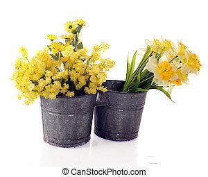 Cut Spring Flowers