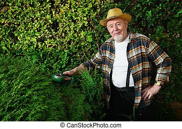 cut the bushes