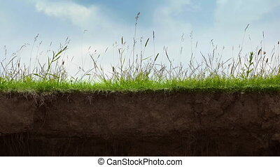 Cut the soil with grass growing on top. 1080p FullHD footage
