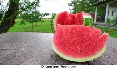 Cut watermelon on garden table