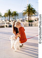 Cute 2-year old girl in a terracotta dress is playing with a small white dog on a leash