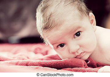 Cute 3 months baby lying on red blanket and looking at the...