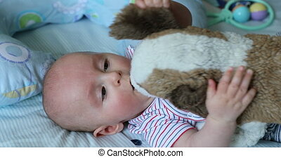 Cute 5 Month Old Baby Boy Playing With a Plush Dog