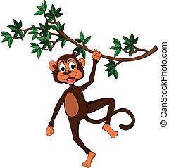 cute, abe, på, en, træ