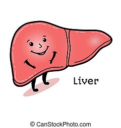 Cute and funny human liver character