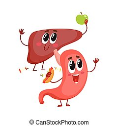 Cute and funny, smiling human stomach and liver characters, ...