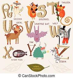 Cute animal alphabet. R, s, t, u, v, w, x, y, z letters. Raccoon, squirrel, tarsier, urial, vampire bat, wolf, x-ray fish, yak, zebra. Alphabet design in a retro style.