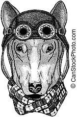 Cute animal wearing motorcycle, aviator helmet DOG for...