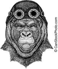 Cute animal wearing motorcycle, aviator helmet Gorilla,...