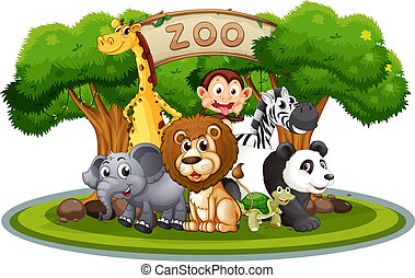 Cute animals in the