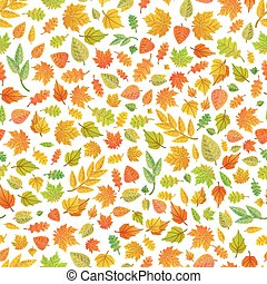 Cute autumn leaves from different kind of trees on white, seamless pattern