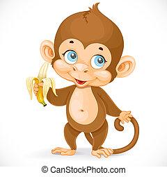 cute, baby abe, hos, banan, stand, på, en, hvid baggrund